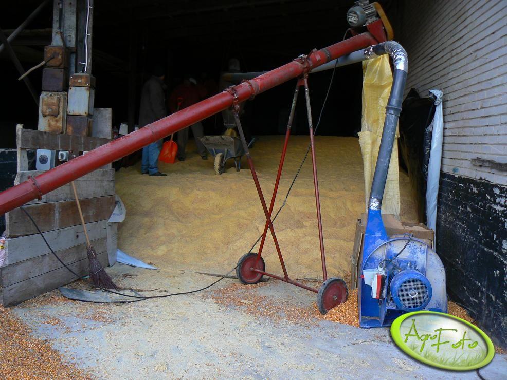 Zestaw do mielenia ziarna kukurydzy na kiszonkę. W tym roku