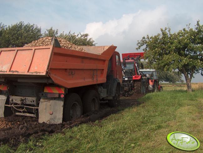 Belarus 952.2 + Tur 6