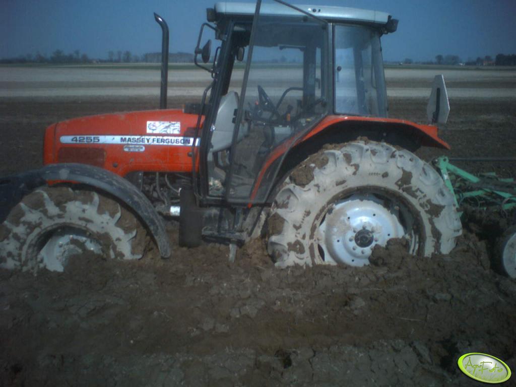 MF 4255