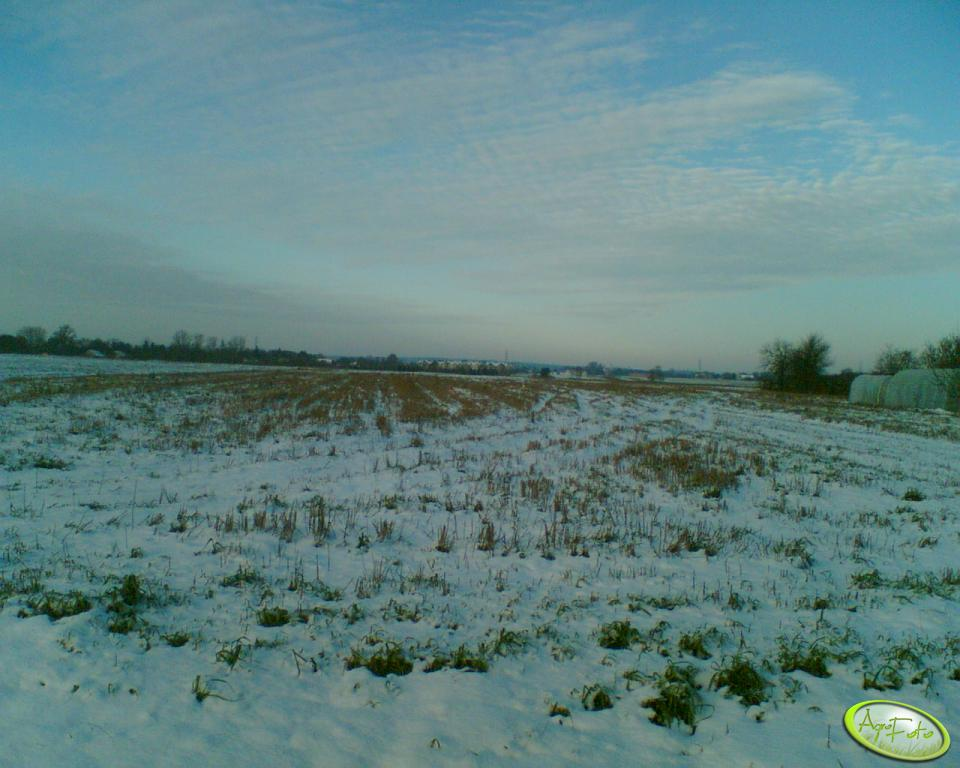 Zima 2007
