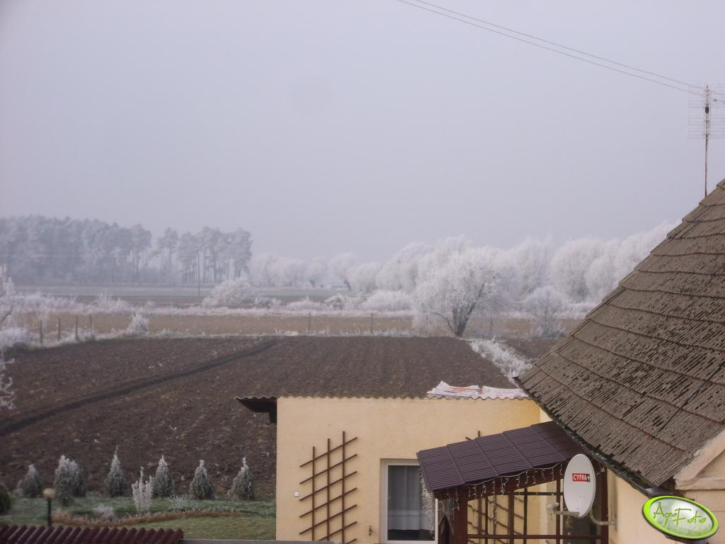Widok za okna