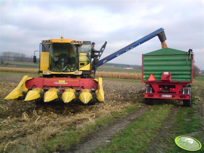 NH CS6050 podczas wysypu kukurydzy