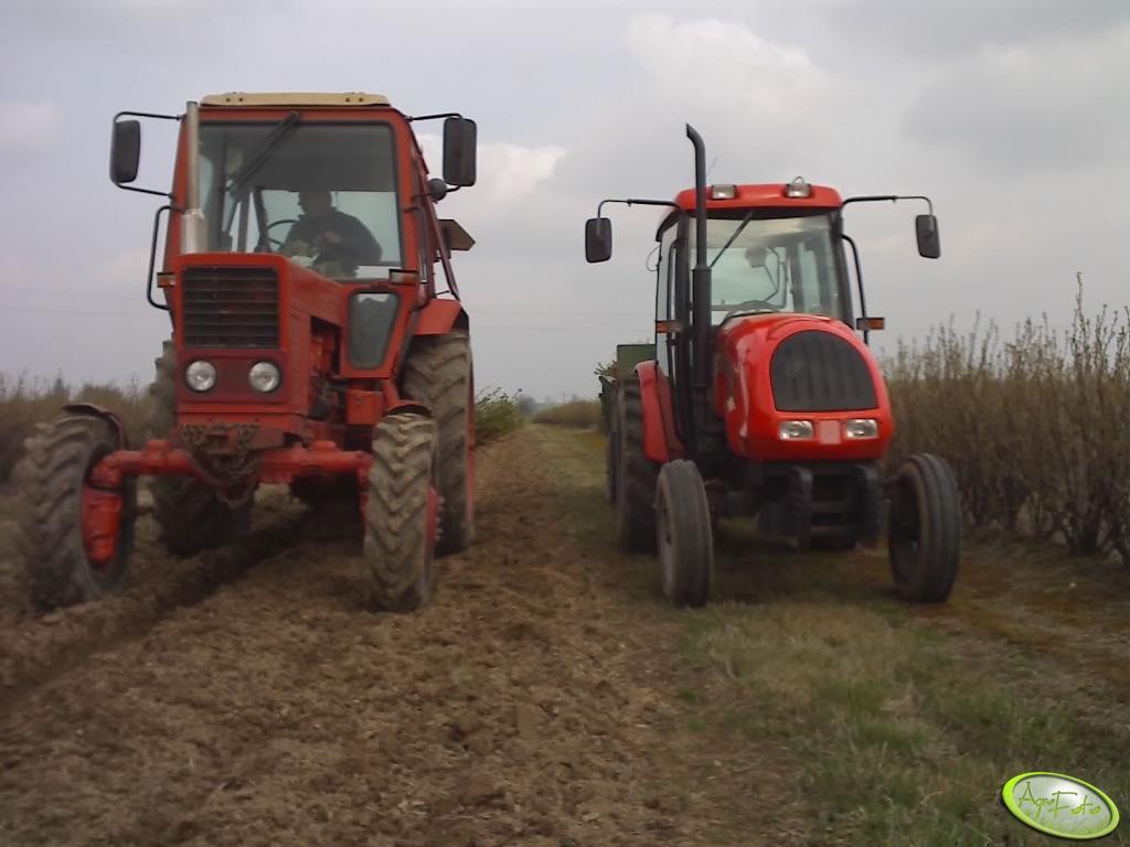 MTZ 82 i Ursus 4502
