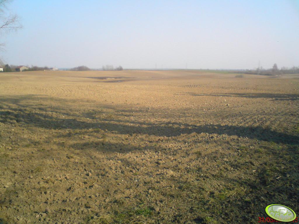 Zabronowane pole