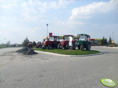 Belarusy