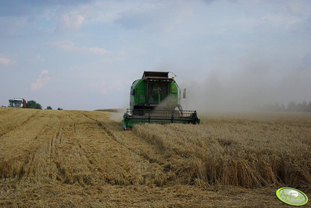 DF 3610 Kosi pszenicę