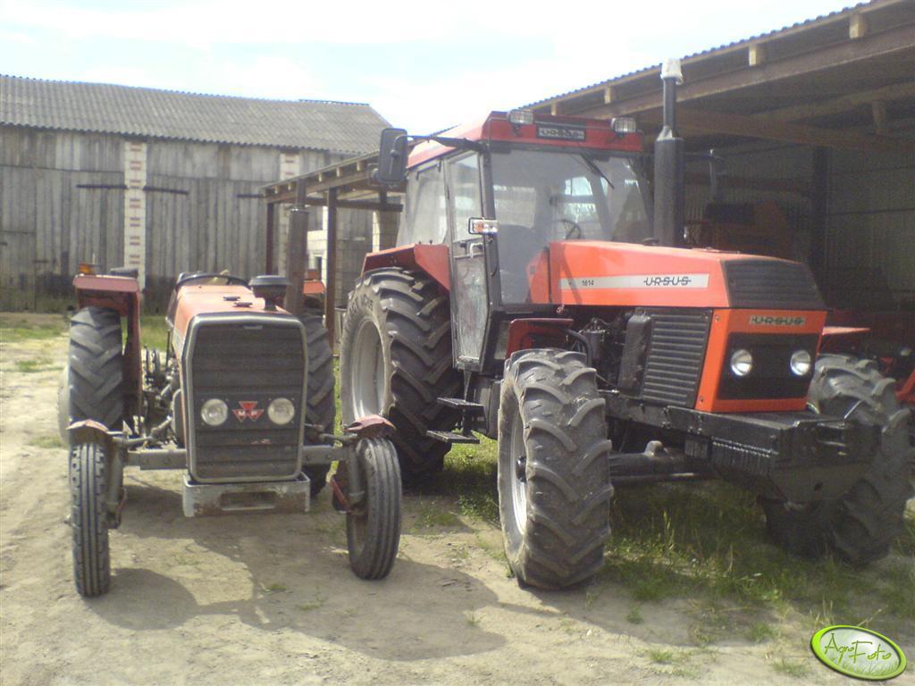 Ursus 1614 i MF 255