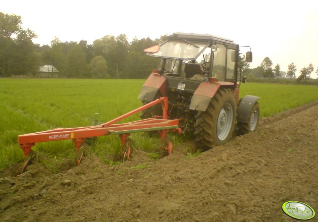 Belarus 820 + pług Agro Masz