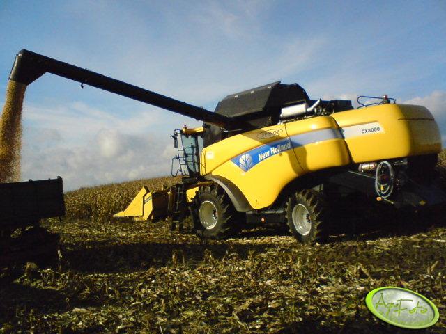 NH CX 8080 + przystawka do kukurydzy