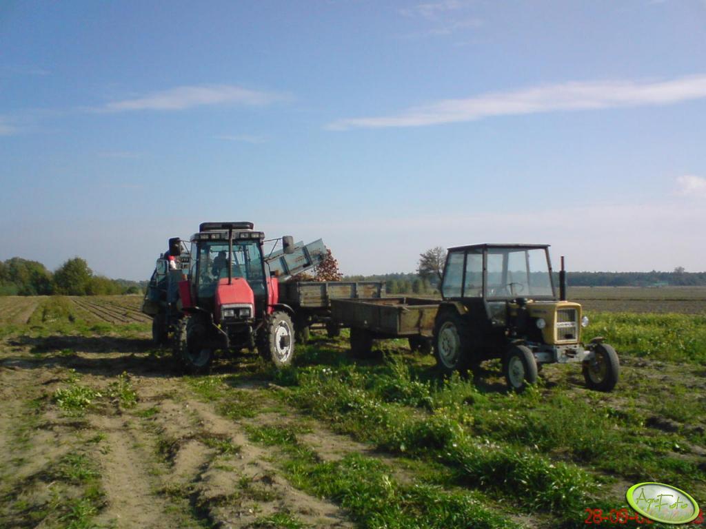 MF 6140 + Anna Z664