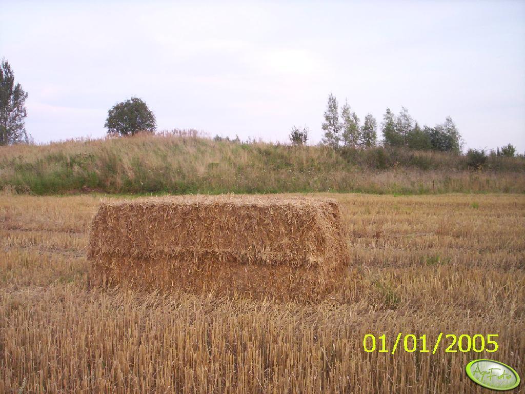 Duża Kostka