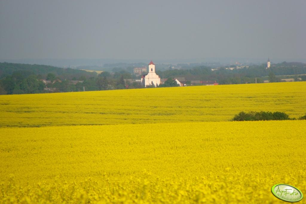 Tereny Opolszczyzny powiatu Głubczyckiego