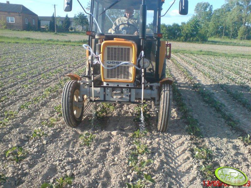 Sprzęt do podlewania truskawek