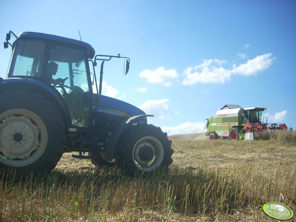 Claas Dominator Mega 204 + New Holland TD95D ;]