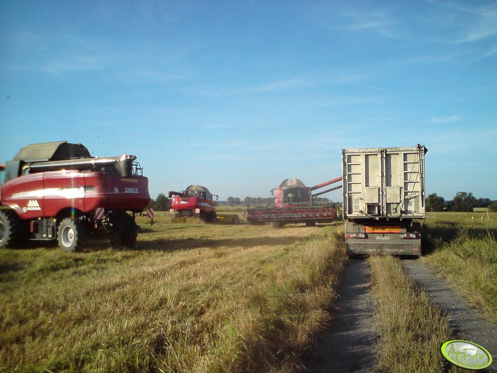 Case Axial-Flow 8010 x4