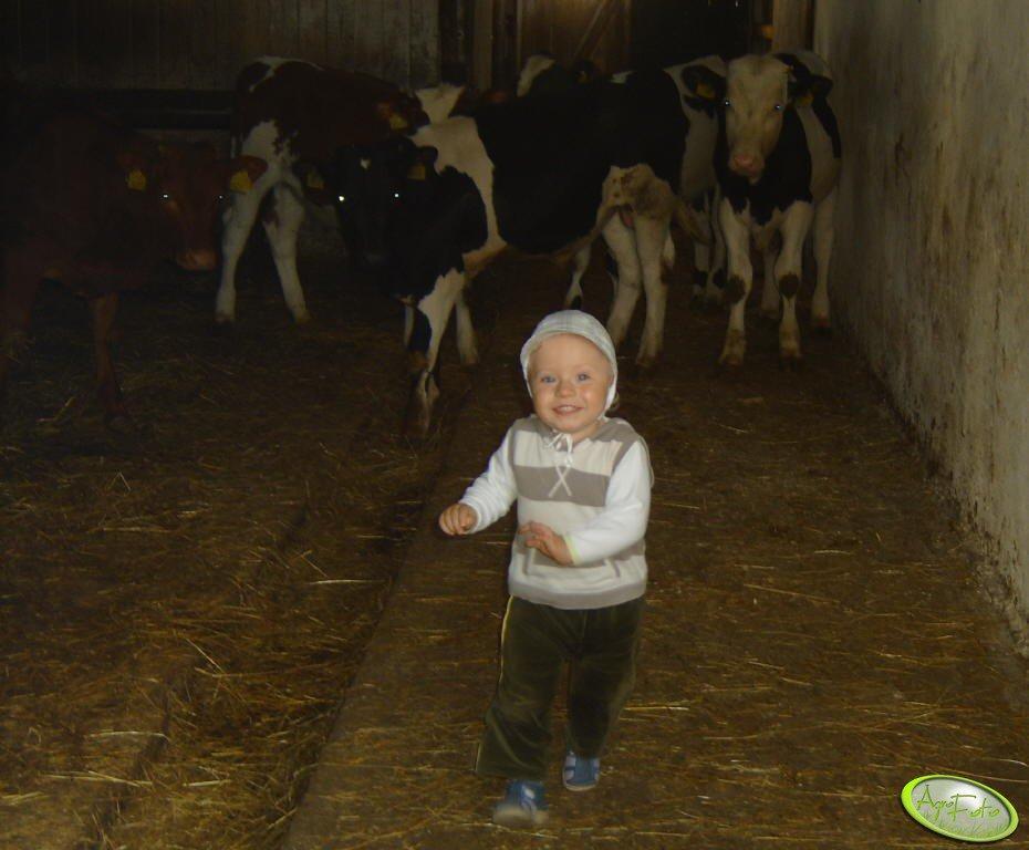 Mały Farmer