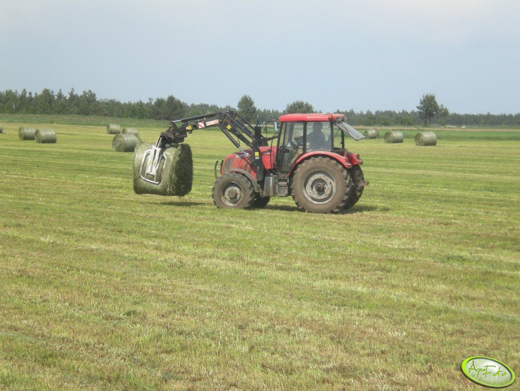 Farmer F-10244C1 & MF T229