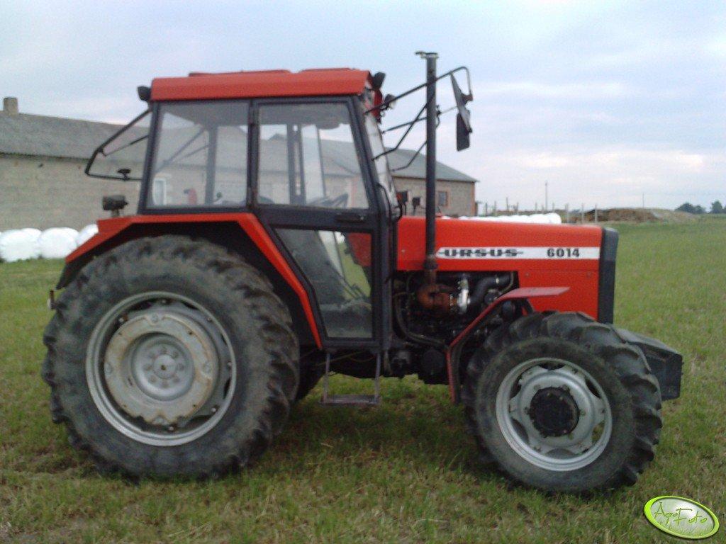 Ursus 6014