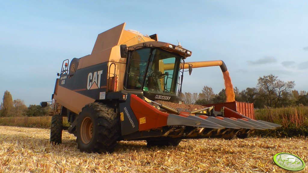 CAT Lexion 460 + Dominoni 6