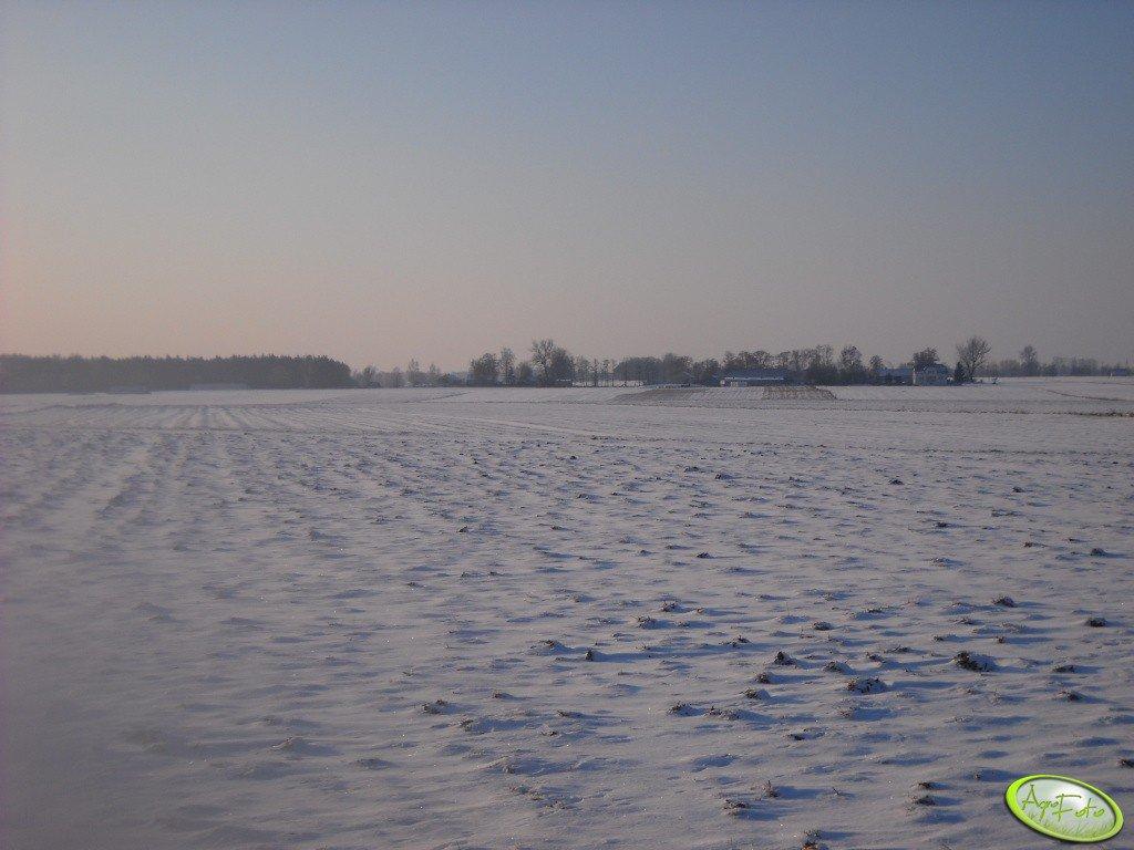 Zimowa Okolica