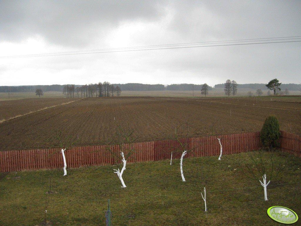 Pole & Łąki