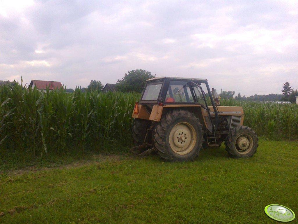 Ursus 904 i kukurydza