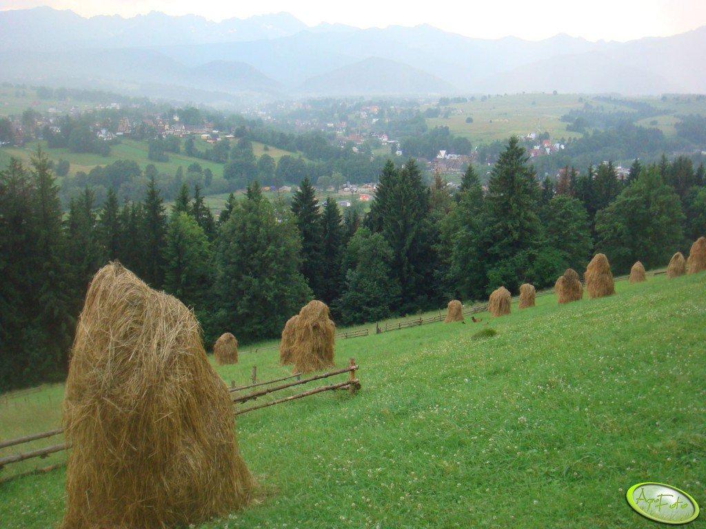 Siano w Tatrach