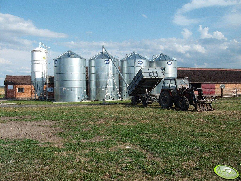 Silosy BIN-y 4 x 70 ton i Silotech 17,5 tony