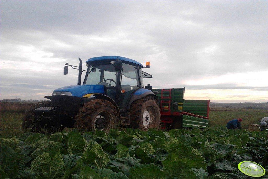 New Holland TD5030 + Pronar T653/1