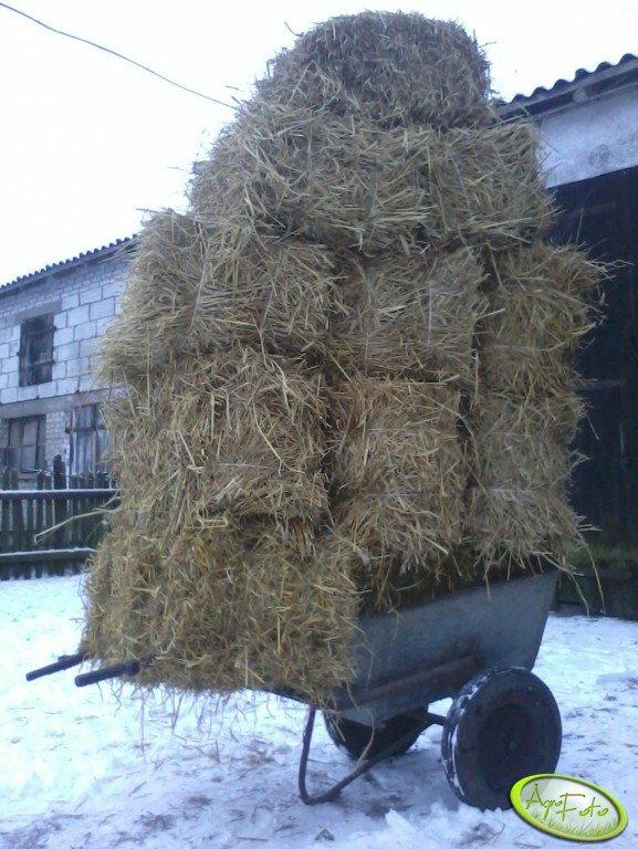 Wózek japonka