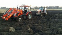 Zetor major 80 ursus 914