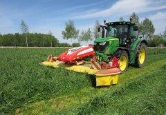 BARENBRUG - nasiona traw i lucerny