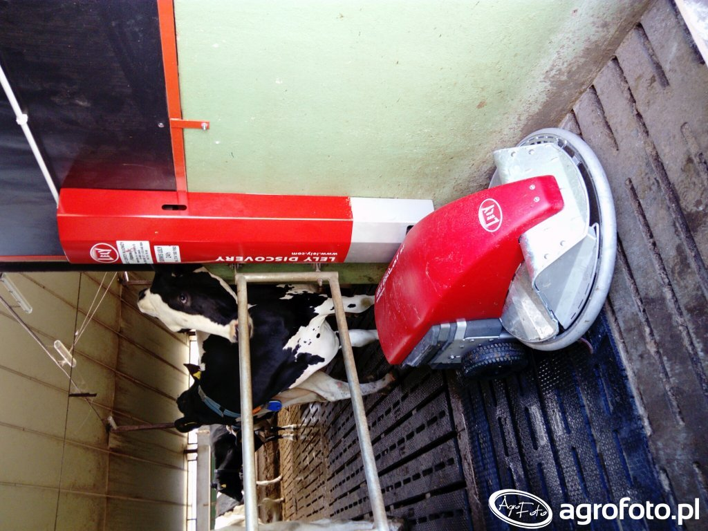 LELY DISCOVERY