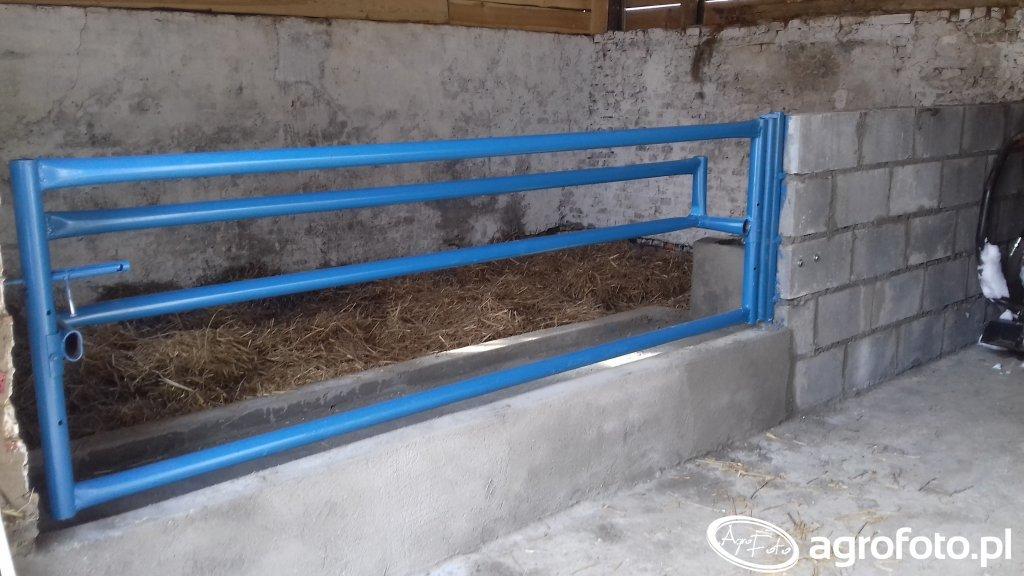Pomieszczenie dla bydła