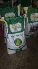 Śruta kukurydziana