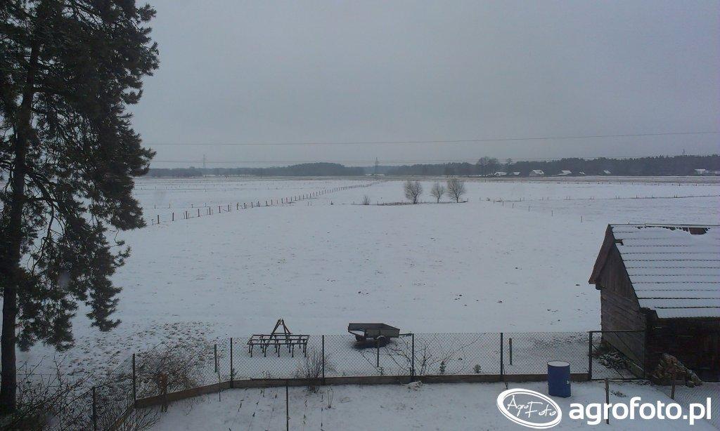 Pastwisko pod śniegiem.