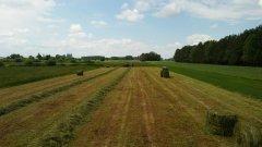 Zbiór trawy na sianokiszonke