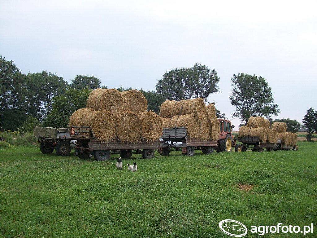 Autosan D46 & 3x Autosan d47 & Autosan D732 & mtz 82 &c360 3p