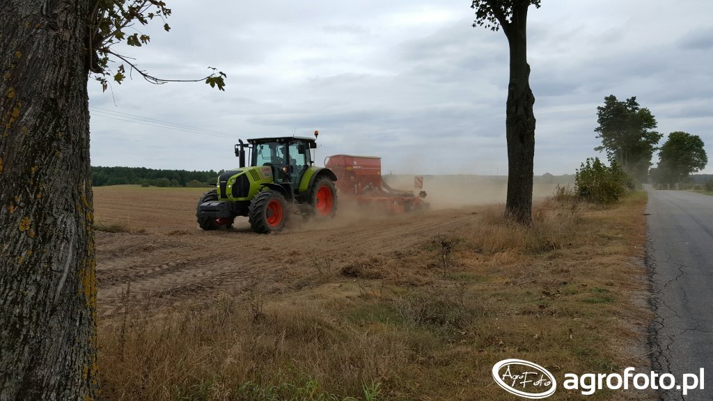Claas Arion 620 & Horsch Pronto 4DC