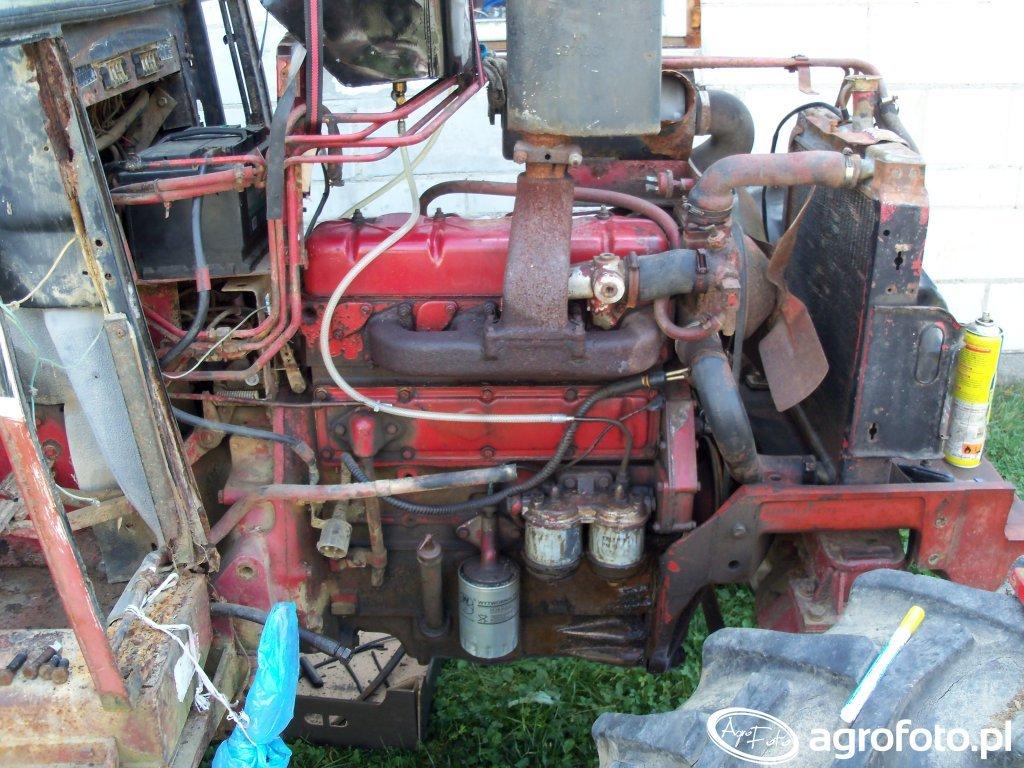 Foto traktor International 584 id:663728 - Galeria rolnicza