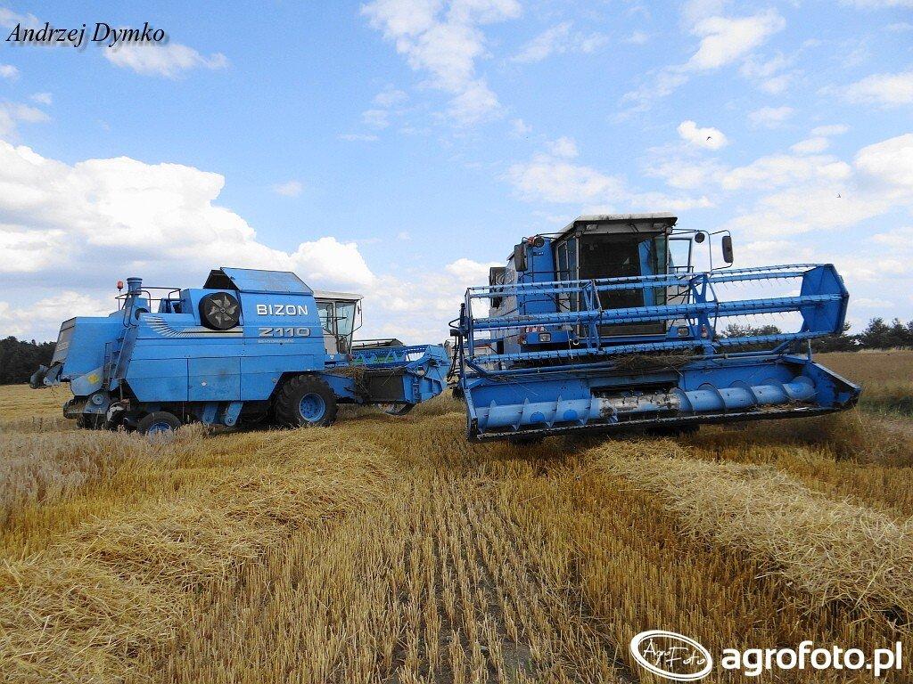 Kombajn Bizon BS Z110 x2 - foto #702591 - Galeria rolnicza