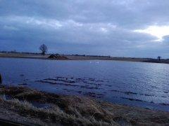 Woda na polu