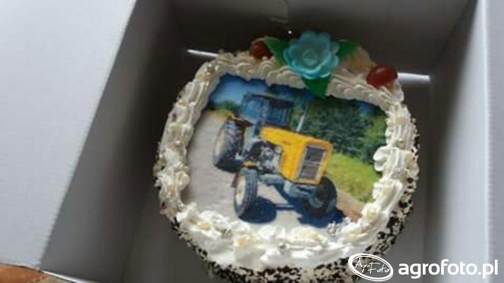 Tort Ursus