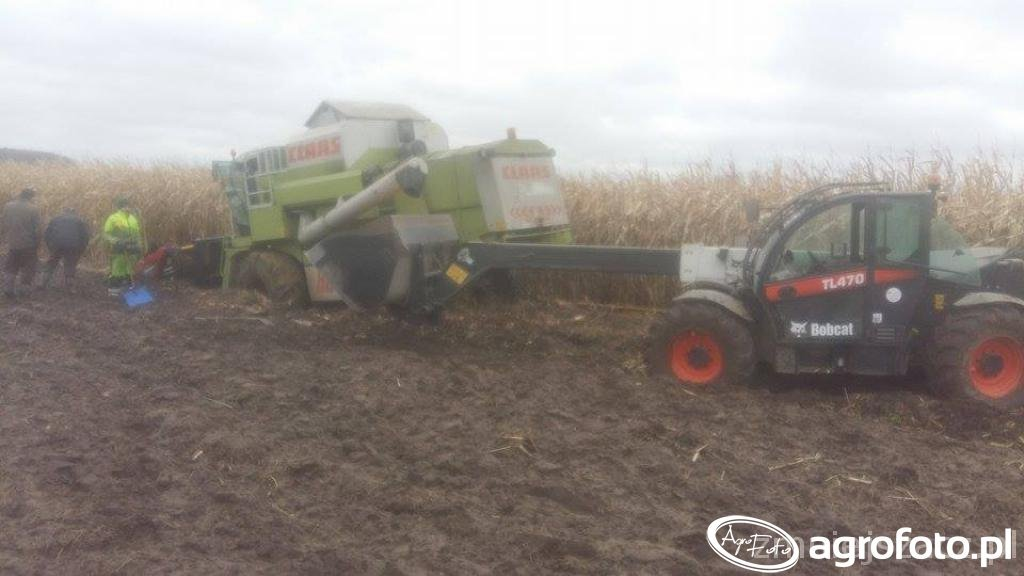 Claas dominator & Bobcat TL