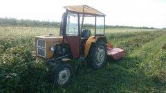 Ursus C-330 & Rozdrabniacz sadowniczy MCMS Warka