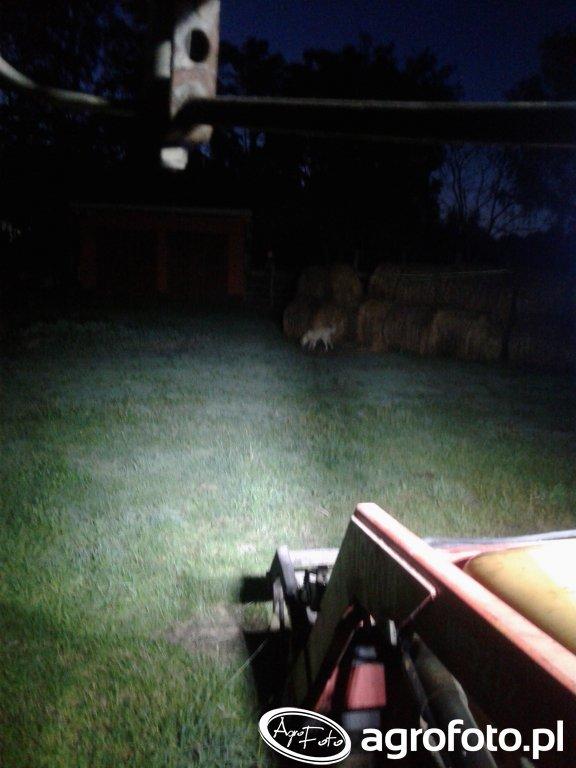 Oświetlenie URSUS C360-3p