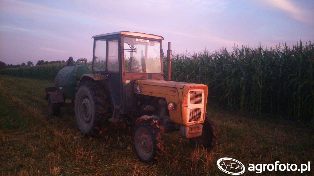 Ursus C-360 + wóz asenizacyjny & kukurydza 2015