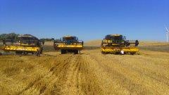 New Holland Cx8070 &Cx5080 & Cx 6080