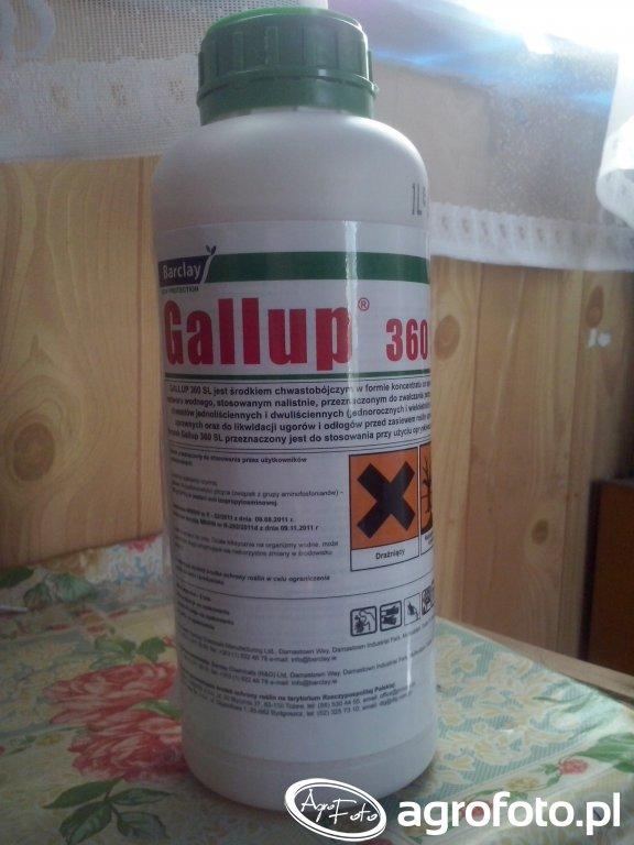 Gallup 360SL