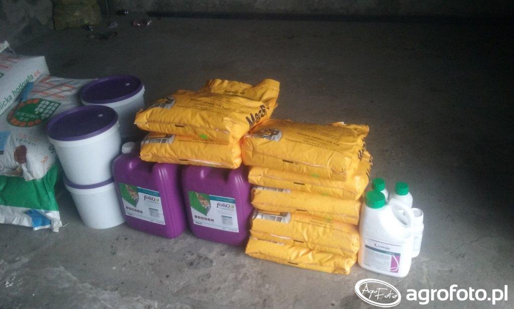 Nawozy dolistne i oprysk na kukurydzę